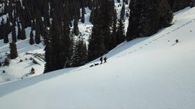 Deux voyageurs avec des chiens escaladent les montagnes neigeuses parmi le sapin sur la traînée Photographie stock