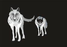 Deux wolfes Image libre de droits
