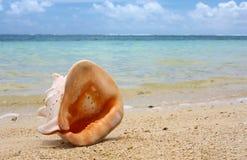 Deva na praia Imagem de Stock Royalty Free