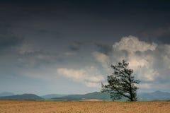 Devant des nuages Images libres de droits