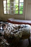 Devastated bed. Abandoned room with vandalized bed in it stock photo