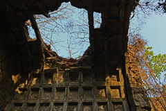 Devastated Fort. A destroyed fort with full of roots in the forest royalty free stock photography