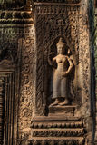 Devatas basreliefer på templet för Ta Prohm Royaltyfria Foton