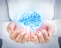 Develop the talent, protecting the intellect. Brain in the hands royalty free stock photos