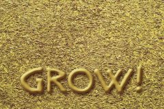Develop your seed ideas. Seeds under the word, who commands them to grow stock illustration