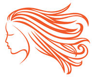 Developing hair. Profile girl with developing hair Stock Photos