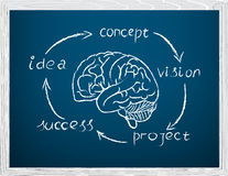 Development of business concept. Written in chalk on a blackboar Royalty Free Stock Photo