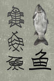 The development of Chinese character Fish. The gradual development of Chinese character Fish royalty free stock images