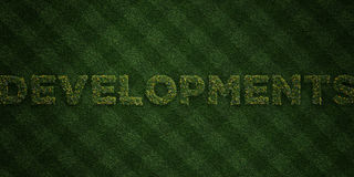 DEVELOPMENTS - fresh Grass letters with flowers and dandelions - 3D rendered royalty free stock image Royalty Free Stock Photo