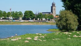 Deventer-Skyline, Sommer Stockbild