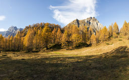Devero Alp, colors of autumn season Stock Image