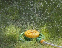 Device of irrigation of lawn. Stock Photo