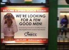 Deviennent un donateur de sperme aujourd'hui ! Nous ` au sujet de rechercher quelques bons hommes Photo libre de droits