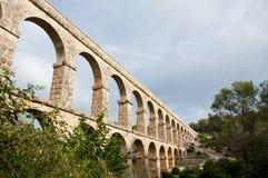 Devil's bro Fotografering för Bildbyråer