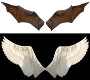 Devil and angel wings Stock Photo