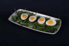 Devil eggs on white rectangular plate with  arugula salad. Royalty Free Stock Image