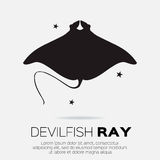 Devil fish ray. Stock Photo