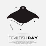 Devil fish ray. Stock Photo