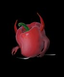 Devil Pepper Stock Image