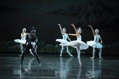 The devil Rothbart poisoned Ojta Swan-The last scene of Swan Lake-ballet Swan Lake Stock Photos