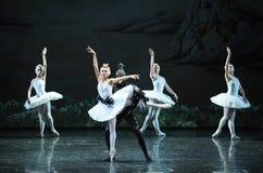 The devil Rothbart poisoned Ojta Swan-The last scene of Swan Lake-ballet Swan Lake Stock Photo