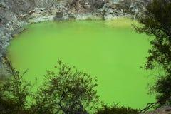 Devil`s Bath green pond at Wai-O-Tapu thermal wonderland, Rotorua, North Island, New Zealand stock photos