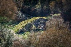 Free Devil`s Bridge Ponte Del Diavolo In Blera, Medieval Village In Viterbo Province, Lazio, Central Italy. Royalty Free Stock Photos - 106594928