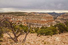Devil`s Canyon Utah Royalty Free Stock Photo