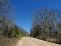 Devil`s Den State Park gravel road in early spring. Devil`s Den State Park in northwest Arkansas, gravel road with tall trees, hills, cedars and early spring Stock Photo