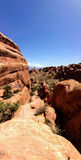 Devil's Garden Trailhead, Arches National Park, Moab royalty free stock image
