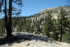 Devil's postpile. Vertical granite rods in Devils Postpile National Monument in eastern California - create a mosaic flooring Stock Photo