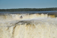 Devil's Throat. Front view of the Devil's Throat at Iguazu Water Falls Stock Photo