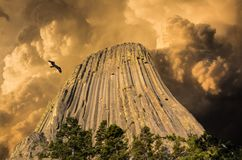 Devil`s Tower, Wyoming, U.S.A. Stock Photography