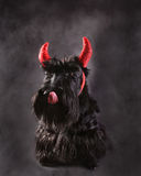 Devil terrier Royalty Free Stock Images