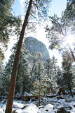 Devil Tower in the snow. Devil Tower national monument covered in the snow with sun ray royalty free stock image