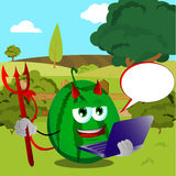 Devil watermelon holding laptop on a meadow Stock Photos