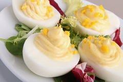 Deviled egg Stock Photos