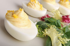 Deviled egg Royalty Free Stock Photos