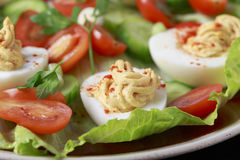Deviled egg salad macro Royalty Free Stock Image