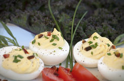Deviled Eggs Stock Image