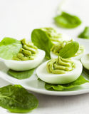 Deviled eggs with avocado and spinach Stock Images