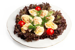 Deviled eggs salad Stock Images