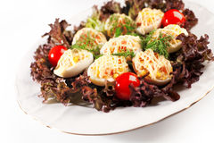 Deviled eggs salad Stock Photography