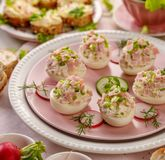 Deviled eggs, stuffed eggs filled with a paste made from smoked ham, mayonnaise, egg yolks and fresh chive on a plate. Tasty breakfast, appetizer for party or stock images