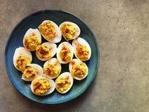 Devilled eggs en la placa azul y el fondo gris imagen de archivo