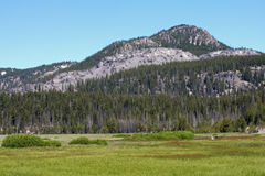 Devils Hill from Sparks Lake Flood Plain. Devils Hill is seen here from Sparks Lake flood plain in the Central Oregon Cascades west of Bend, Oregon Stock Photos