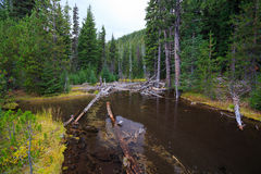 Devils Lake Central Oregon Royalty Free Stock Images