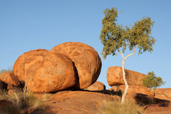 Free Devils Marbles Royalty Free Stock Photography - 26684397