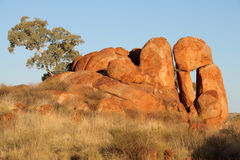 Free Devils Marbles Royalty Free Stock Images - 26684519