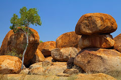 Devils marbles outback Australia granite boulders. Devils marbles Northern territory Australia, giant granite boulders formed by erosion with ghost gum tree Stock Photos